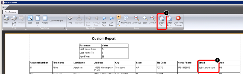 Print Preview of Custom Report