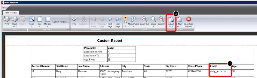 Print Preview of Custom Report