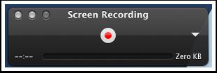 Recording window