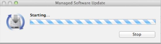 Software Installation Screen