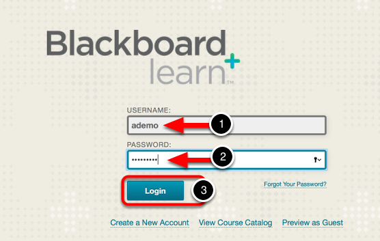 Log In to Blackboard