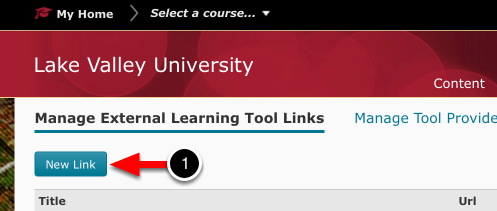 Step 1: Create New LTI Link