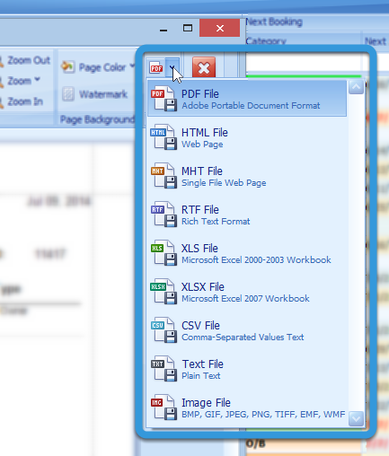 Saving the Report as a PDF or Another File Format
