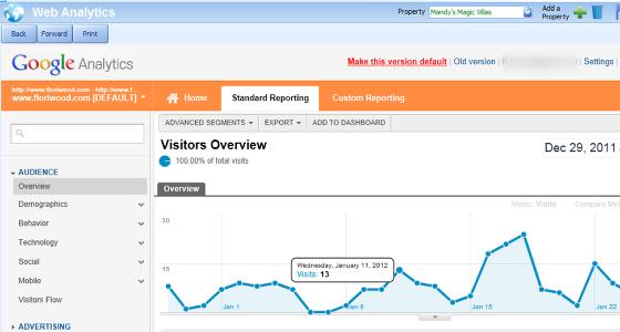 The Web Analytics Screen
