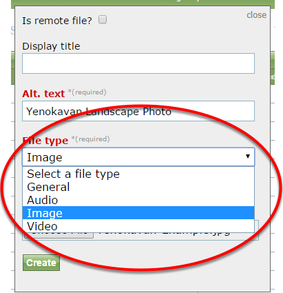 The Media Manager will recognize what type of file you have uploaded but confirm it is correct in the dropdown menu.