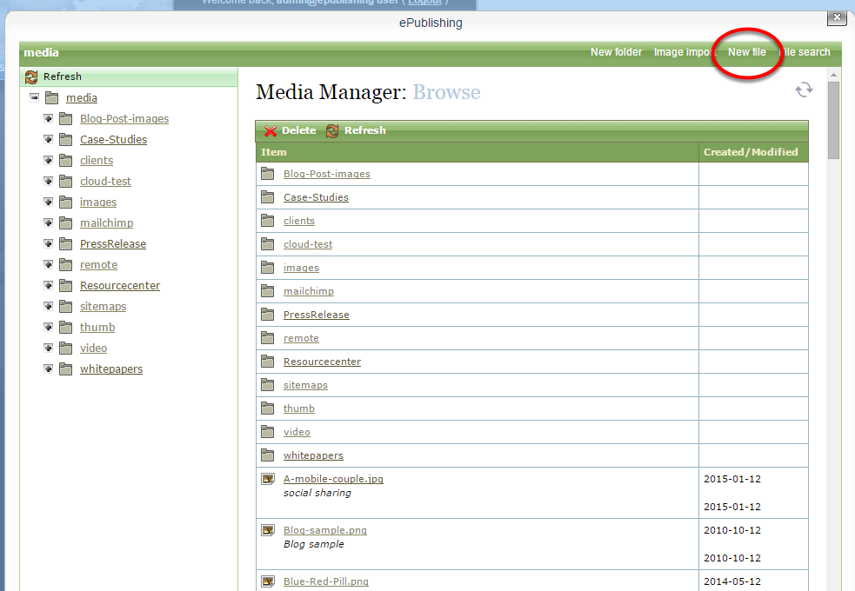 In the Media Manager, upload your file.