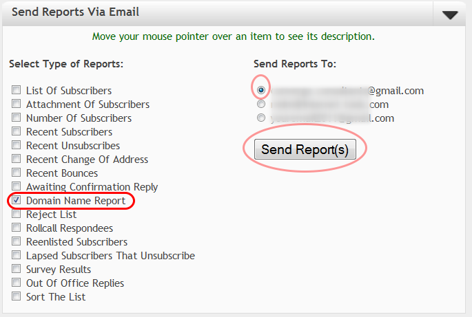 "Select ""Domain Name Report"" and the email address where you want to receive the report:"