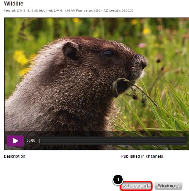 Tilføj din video til en kanal