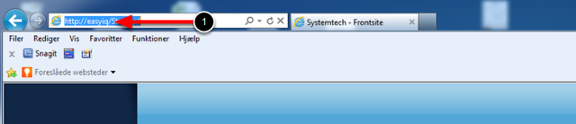 Åben Internet Explorer