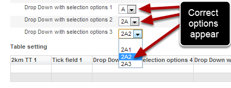 Now click on preview and check that the correct conditional options are appearing as expected