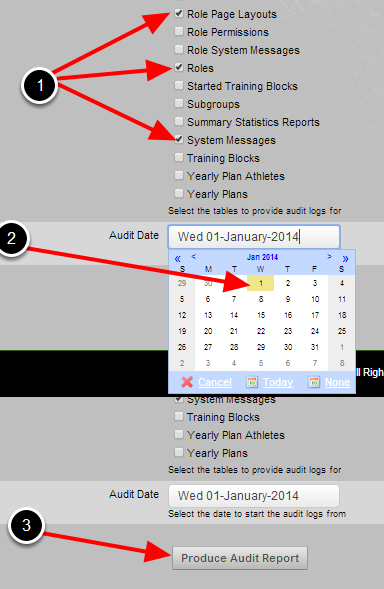 To run an audit, click on the module/s required. Then, select the date that the audit report will run from