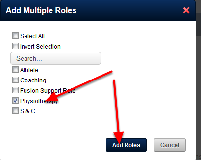 "You can add in Multiple Roles at once using the ""Add Multiple Roles"""