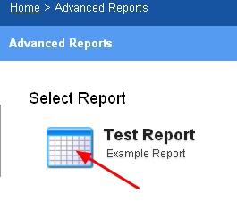 To run the report, simply click on it from the Advanced Reports List