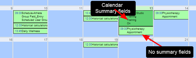 Double check which fields you have enabled as Calendar Summary Fields; for most Appointments you will NOT set up any fields to be calendar summary fields
