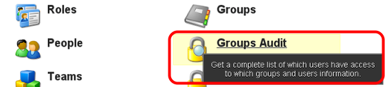 1. To Review all of the groups and the professionals/coaches that access each group, use the Groups Audit button