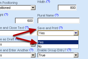 Save and Print allows a user to save the data and create a PDF of the recently entered information. This is useful for review forms or medical forms