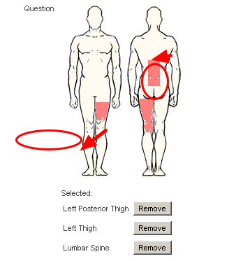 The Body Diagram is an front and back view where the user can select different body areas. This can be used to highlight areas of injury, pain or even where they were massaged.