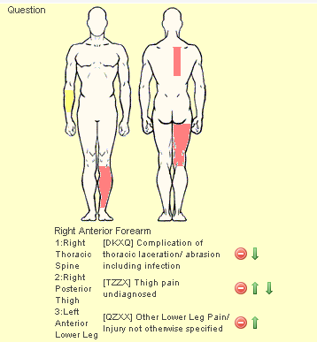 A Body Area will appear and body area contains a list injury diagnosis. Again set the Maximum number of items to track the amount of injuries that you require. Most track a maximum of 3 e.g primary secondary and tertiary.