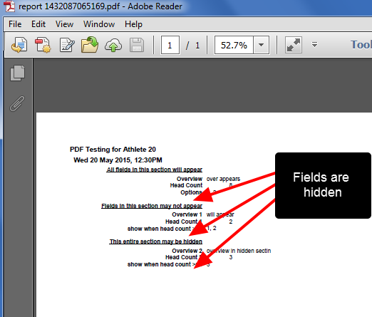Example of the PDF output from PDF within the Form