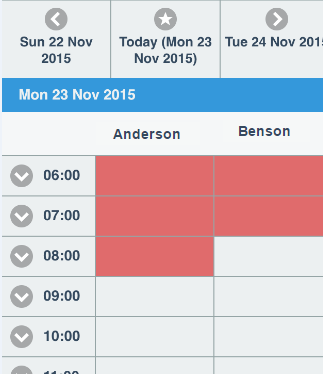 These Related Entity options then appear in the booking calendar