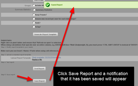 "After you have tested the report, you must click ""Save"". Remember, you cannot edit it again once you Save it and click out of this page so ensure it it formatted correctly (the pivot table, page layout etc)."