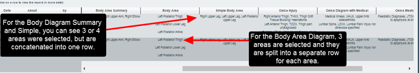 Note, the Body Diagram Summary and the Simple Body diagram concatenate selected areas into one row for the athlete history and exports.