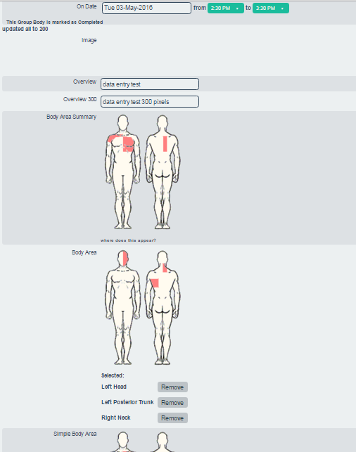 This form contains examples of the different body diagram areas and OSICS codes