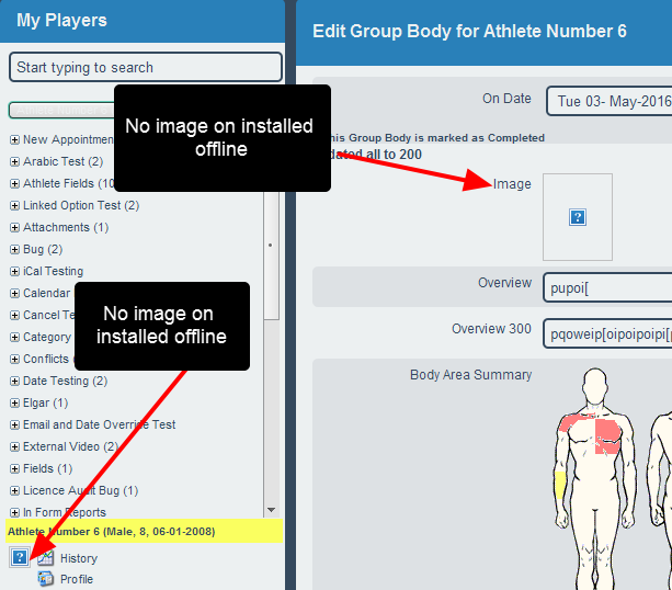 Just as athlete images do NOT appear on the installed version offline, the profile picture cannot be displayed offline.
