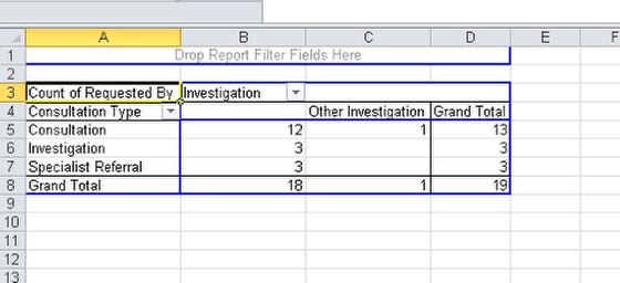 The Opened Excel Report