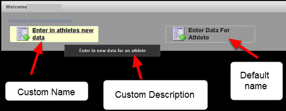 This image provides you with an example of how the system looks with only one Section and the Enter Data Module enabled as a Button in this Section. You can see the custom name and custom description for the Enter Data Module.