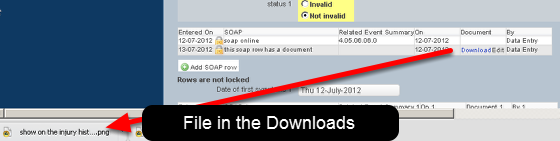 """Once you click Download, the site will say """"downloading"""". When it has finished the file will be available from the Downloads directly (if you are on the internet version), or in from the specified location if you are on the installed version."""