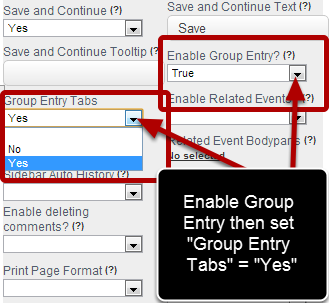 "Once you set Group Entry as ""True"", the ""Group Entry Tabs"" option appears and you need to set this to ""Yes"""