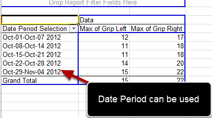 The Date Period Selection can then be used in pivot tables (as shown here) or charts to show performance trends
