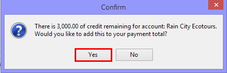 Posting Payment Using Account Payment Credit