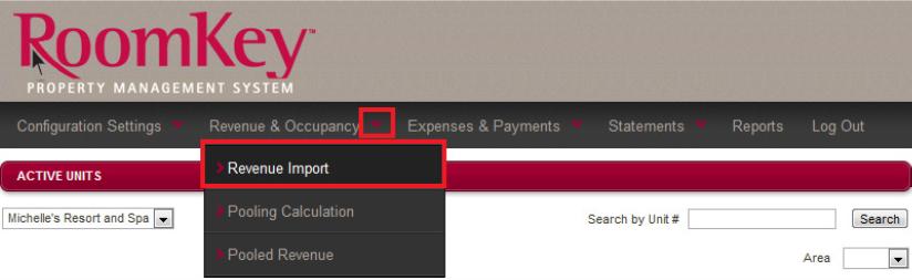 How to Import Revenue