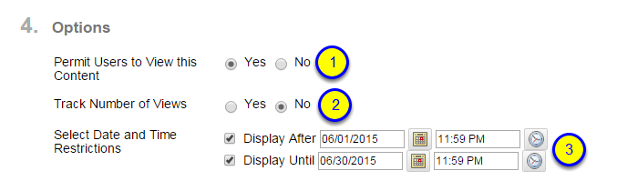 To make it so students CANNOT see the Voice thread after a specific date and time, in the Display Until fields, enter the date and time you want students to no longer be able to see VoiceThread.