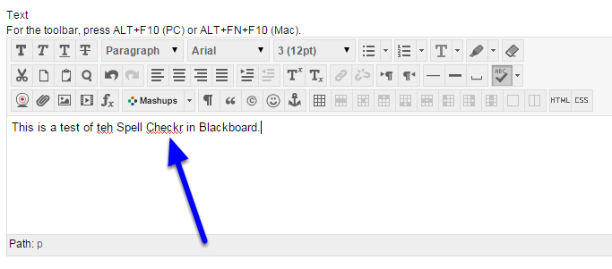 Type your information in the text box. Spell check will automatically begin to underline any misspelled words in red.