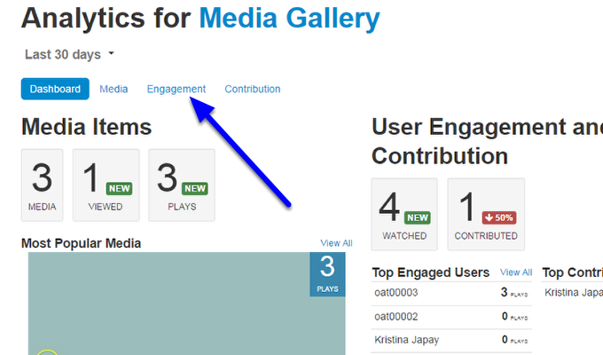 The Analytics page provides you the statistics for your entire media gallery. To view statistics for individual videos and users, click on Engagement.