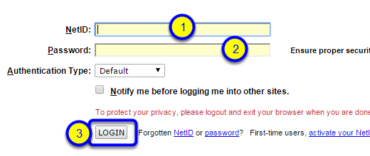 Enter your NetID and Password. Then click Login.
