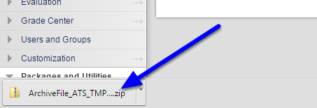 Your archive file will begin to download as a zip file.