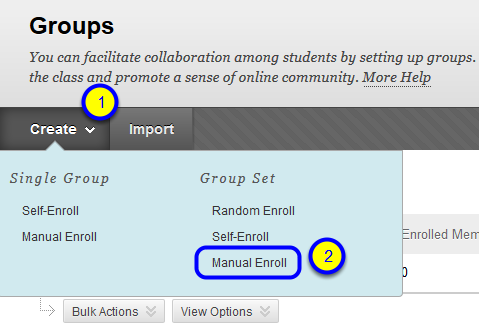 "Hover your mouse over the Create button, and in the ""Group Set"" section, click ""Manual Enroll"" in the drop-down menu."