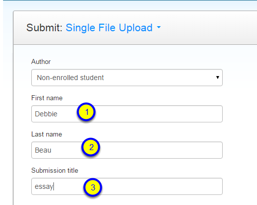 Type in a first name, last name and submission title.