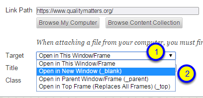 """In the Target section, click the down arrow next to """"Open in This Window/Frame"""" and select """"Open in New Window (_blank)."""