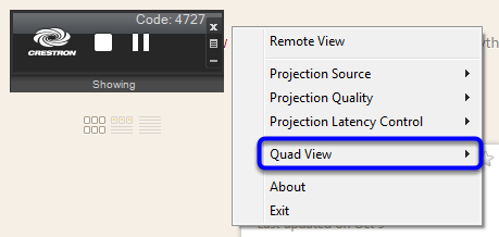 In the menu, click on Quad View.