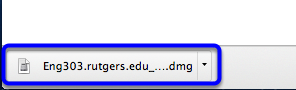 Once finished downloading, click on the .dmg file at the bottom of your browser's window.