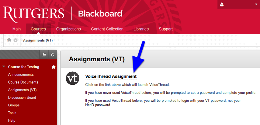 Navigate to the location in the course where your instructor has posted the VoiceThread activity (designated by vt icon) and click on the link.