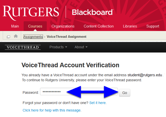 You will be passed onto the course area within VoiceThread.  If you have never used VoiceThread before, you will be prompted to set up a password and complete your profile.  If you have already used VoiceThread, you will be prompted to login with your VT password (not your NetID password).