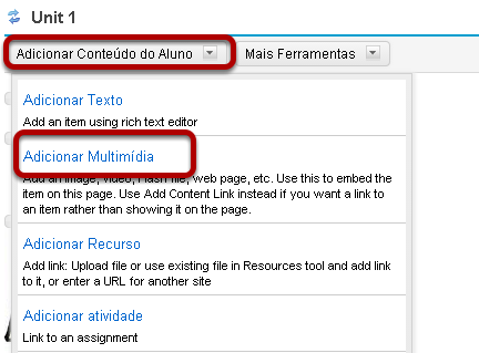 Imagem vinculada: Clique em Adicionar Conteúdo, então Adicionar Multimídia em uma página.