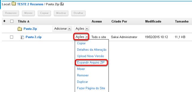 Clicar em Ações e, em seguida, Expandir Arquivo Zip.