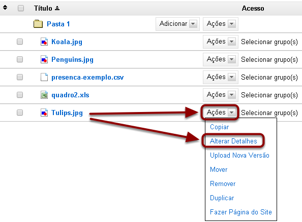 Clicar em Ações, em seguida, clicar em Alterar Detalhes do item.